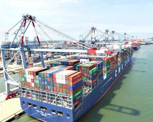 Vận tải đường biển hàng lẻ đi EU
