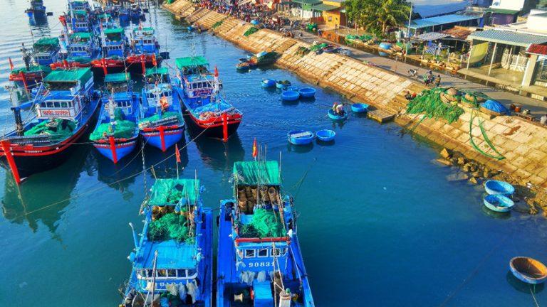 Vận chuyển hàng hóa từ Hồ Chí Minh sang Libya theo đường biển nhanh chóng nhất