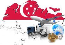 Chuyen phat nhanh DHL tu Can Tho di Singapore
