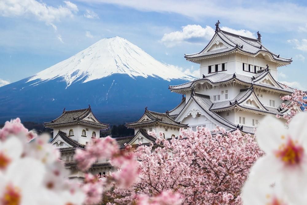 Vận tải  biển Cần Thơ đi Nhật Bản