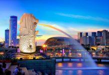 vận tải đường biển từ Cần Thơ đi Singapore