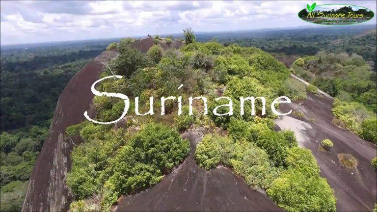 Chuyển phát nhanh từ Cần Thơ đi Suriname chi phí thấp