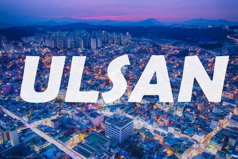 Chuyển phát nhanh từ Cần Thơ đi Ulsan chất lượng tốt
