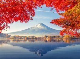 Gom hàng lẻ từ Cần Thơ đi Nhật Bản