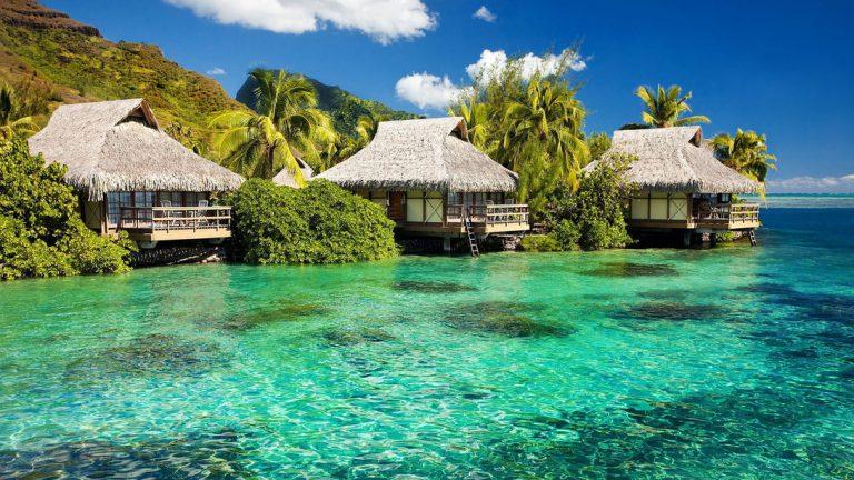 Gửi hàng lẻ LCL từ Cần Thơ đi Jamaica bằng đường biển giá rẻ