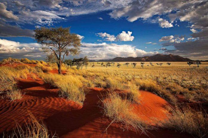 Chuyển phát nhanh đến Namibia