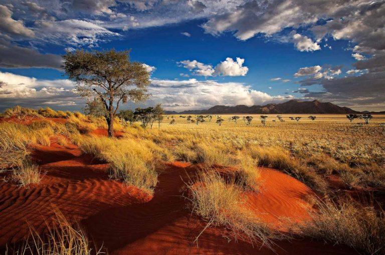 Chuyển phát nhanh từ Cần thơ đi Namibia nhanh chóng, giá tốt!