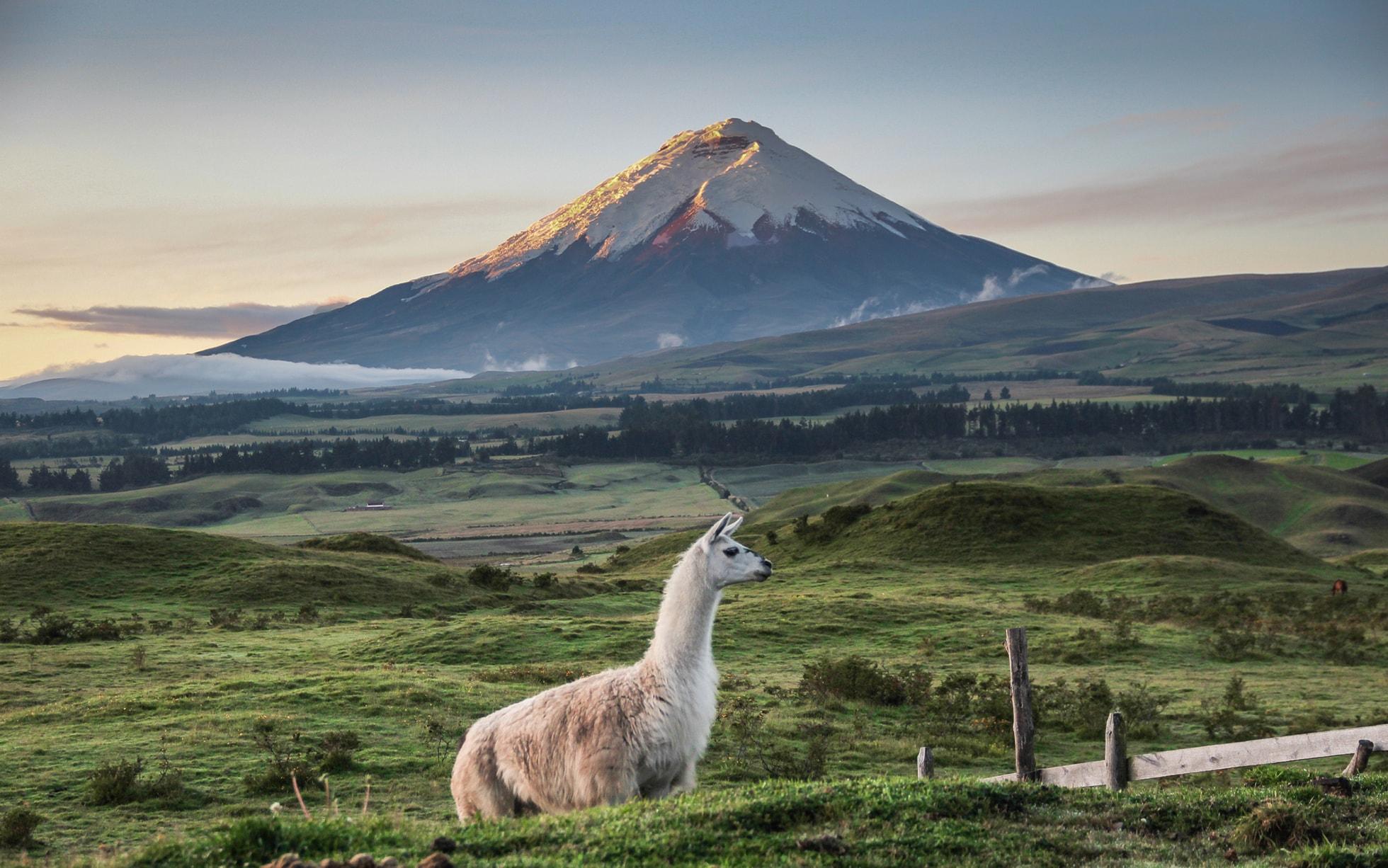 Thiên nhiên Ecuador