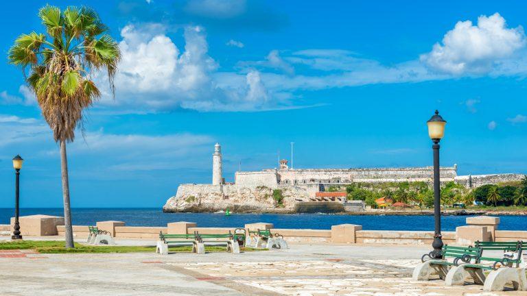 Xuất khẩu gạo từ miền Tây đi Cuba bằng đường biển